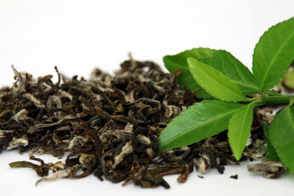 Sử dụng trà xanh là phương pháp khử mùi khá hiệu quả