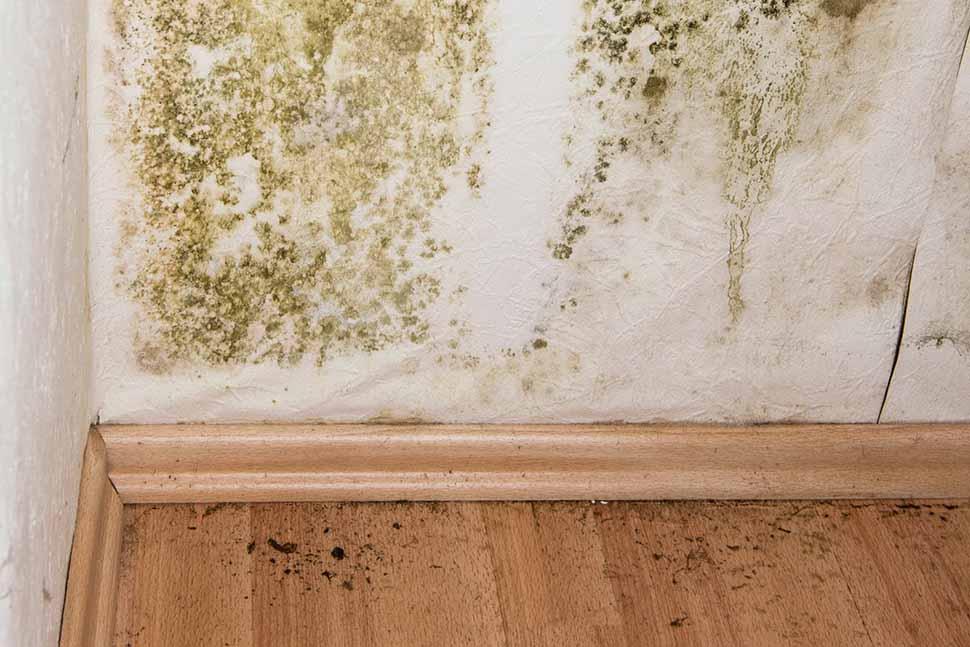 Những sai lầm khi xử lí hiện tượng nhà bị nồm ẩm